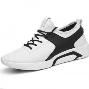 Giày Thể Thao - Sneaker Nam